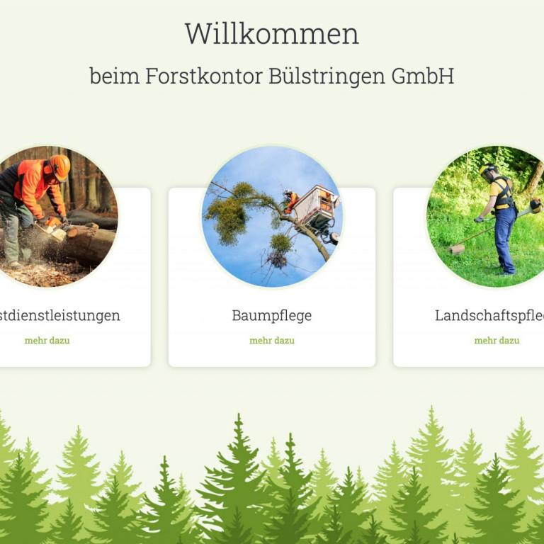 Website Forstkontor Buelstringen